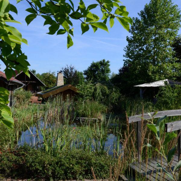 Feuchtbiotop im Wellnessgarten